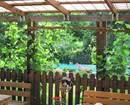 Dreampark Ferienwohnungen, Familie Karall