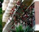 Neda Hotel Olympia