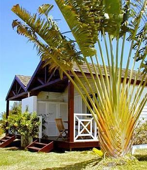 Iloha Seaview H 244 Tel Hotel Saint Leu La R 233 Union Prix