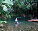 Daintree Cape Tribulation Heritage Lodge