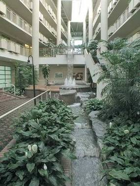 Embassy Suites Parsippany Hanover, Hotel null  Limited Time