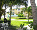 ROYAL PALM BELIZE
