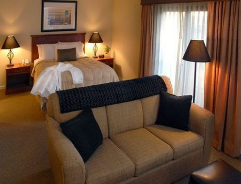 chase suite hotel tampa hotel null limited time offer. Black Bedroom Furniture Sets. Home Design Ideas