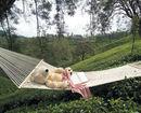 Club Mahindra Lake View Munnar