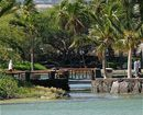 Kolea At Waikoloa
