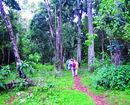 Elephant Point Retreat