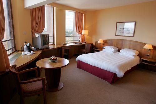 Radisson blu hotel lyon hotel lyon null prix for Hotel a lyon pas cher formule 1