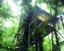 Daintree Eco Lodge & Spa Hotel