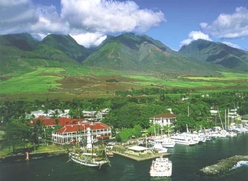 Hotels In Hawaii Infos