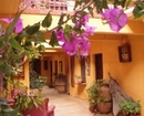 Kaktus Cicegi Hotel