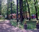 Pensiunea Forest Mirage